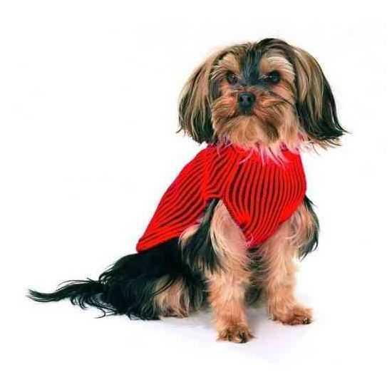 Megztinis - lietpaltis šunims 44cm raudonas
