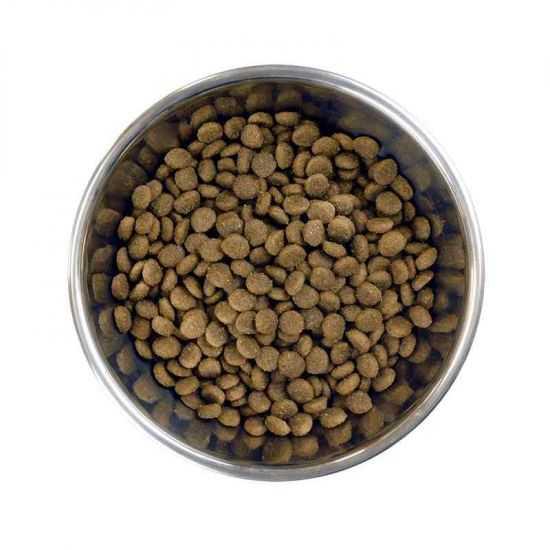 Barking Heads Chop Lickin' Lamb sausas maistas su ėriena mažų veislių šunims 1.5kg 4kg