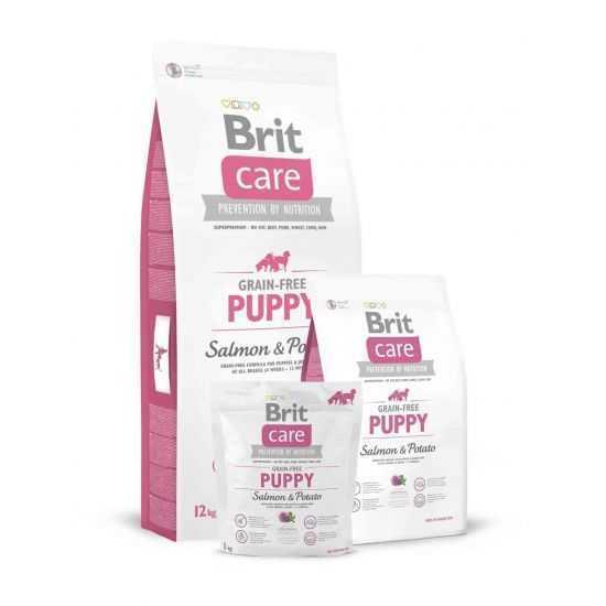 Brit Care Grain-free Puppy Salmon & Potato begrūdis sausas maistas šuniukams 1kg 3kg 12kg