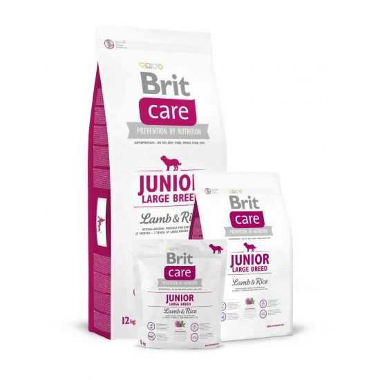 Brit Care Junior Large Breed Lamb & Rice sausas maistas šunims 3 kg 12kg
