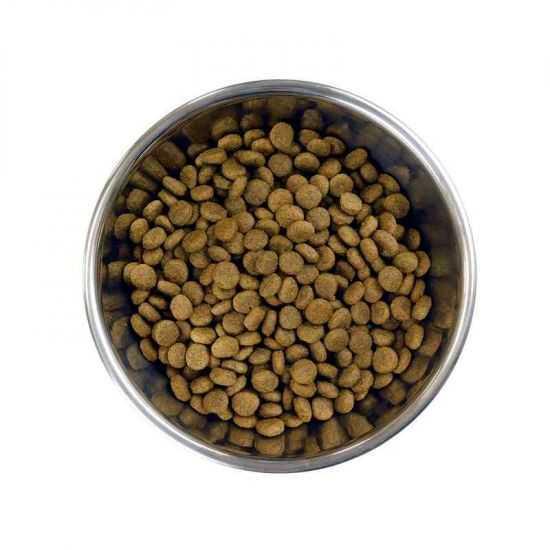 Barking Heads Doggylicious Duck Small Breed sausas maistas su antiena mažų veislių šunims 1.5kg ir 4kg