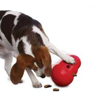 Žaislai šunų skanėstams | Alphazoo.lt