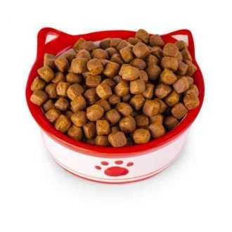 Kačių maistas (sausas), ėdalas internetu | Alphazoo.lt