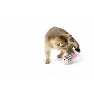 Žaislai katėms (interaktyvūs) internetu | Alphazoo.lt