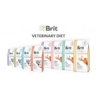 BRIT GF VETERINARY DIETS Cat konservai katėms   Alphazoo.lt